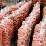 República  Dominicana exporta por primera vez zanahorias a Puerto Rico